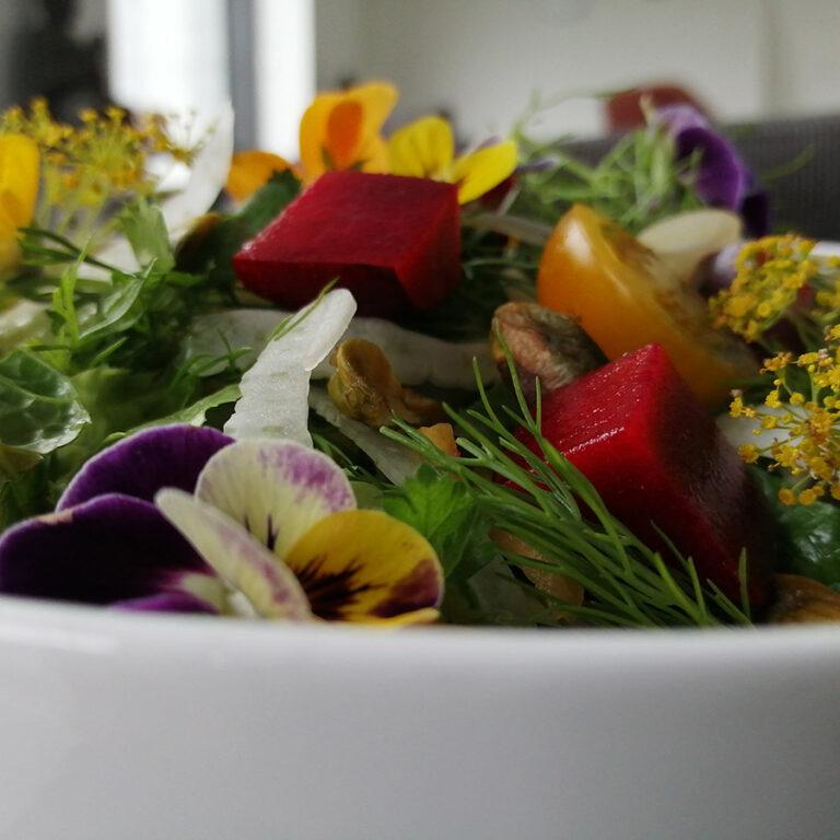 Gezonde salade Elaisa Energetic Wellness